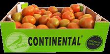 Coagrisan Continental